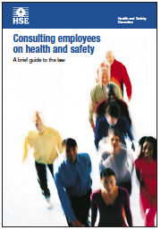 Learn From Accidents: Consulting employees on health and safety